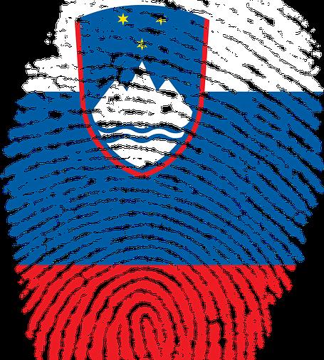 Vizija Slovenije – korak naprej k uresničevanju naše skupne, boljše prihodnosti