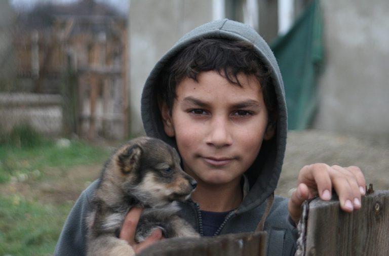 Podatki o šolskem uspehu romskih otrok kažejo, da se jih pušča na cedilu