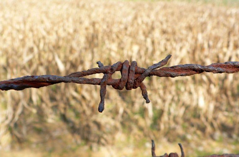 Na malteški kmetiji v nečloveških razmerah živelo 110 prebežnikov